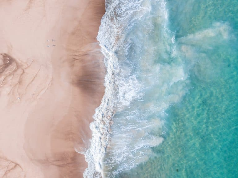 bird view of waves on the beach
